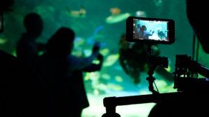 Ripley's-Aquarium-Hero